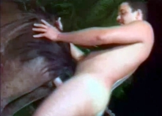 Stallion penetrated by a male zoophile